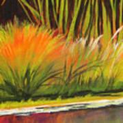 Water Garden Landscape 5 Art Print