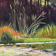 Water Garden Landscape Art Print