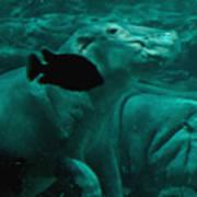 Water Horse Ballet Art Print