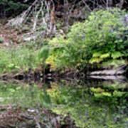 Water Like A Mirror Art Print