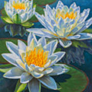 Water Lilies 12 - Fire And Ice Art Print