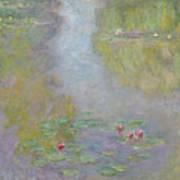 Water Lilies 1908 Art Print