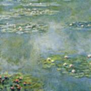 Water Lilies 21 Art Print
