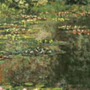 Water Lilies 4 Art Print