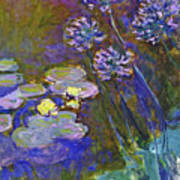 Water Lilies And Agapanthus 1917 Art Print