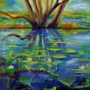 Water Lilies No 1. Art Print