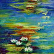 Water Lilies No 3. Art Print