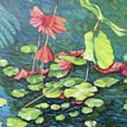 Water Lillies 1 Art Print