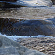 Water Ouzel, Middle Fork Kaweah River, Sequioa National Park Art Print