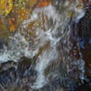 Water Whimsy 169 Art Print