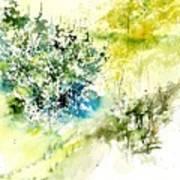 Watercolor 014042 Art Print