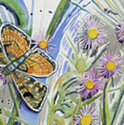 Watercolor - Checkerspot Butterfly With Wildflowers Art Print