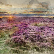 Watercolor Painting Of Beautiful Dawn Sunrise Landscape Image Of Heather On Higger Tor In Summer In  Art Print