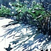 Watercolor4597 Art Print
