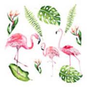 Watercolour Flamingo Family Art Print
