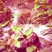 Waterfall Garden Pink Falls Art Print