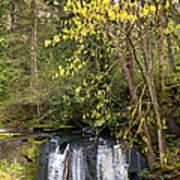 Waterfall In A Park, Whatcom Creek Art Print