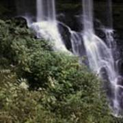 Waterfall Wildflowers Art Print