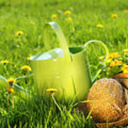 Watering Can In The Grass Art Print by Sandra Cunningham