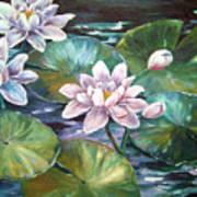 Waterlilies Art Print