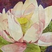 Waterlily Collage Art Print