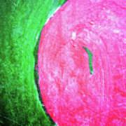 Watermelon Art Print by Inessa Burlak