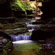 Watkins Glen Gorge In Summer Art Print