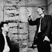 Watson And Crick Art Print by A Barrington Brown and Photo Researchers