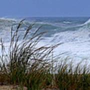 Wave And Sea Grass Art Print