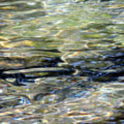 Wawona Ripples 3 Art Print