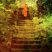 Way To Buddha's Temple Art Print