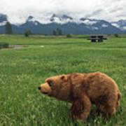 We Saw A Bear Art Print