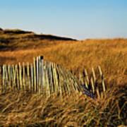 Weathered Dune Fence. Art Print