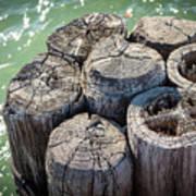 Weathered Wood Pier Posts In Lake Michigan Art Print