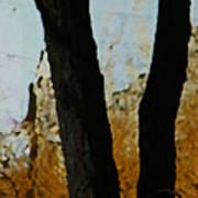 Weeds And Wall Art Print