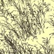 Weeds In Snow Art Print