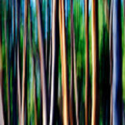 Weeping Yellowstone Trees Art Print