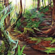 Welcome Paths Art Print