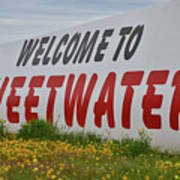 Welcome To Sweetwater  Art Print