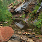 West Fork Trail River And Rock Vertical Art Print