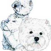 West Highland White Terriers Art Print