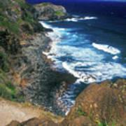 West Maui Coast Art Print