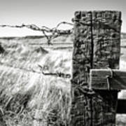Western Barbed Wire Fence Black And White Art Print