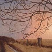 Wet Spring Soft Sunset  Art Print