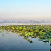Wetlands Morning Mist  Art Print