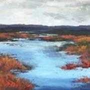 Wetlands Of Washington Art Print