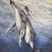 Whale Song Art Print