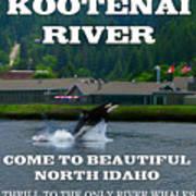 Whales Of The Kootenai River Art Print