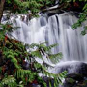 Whatcom Falls Cascade Art Print