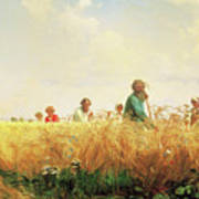 Wheat Field In The Summer Art Print